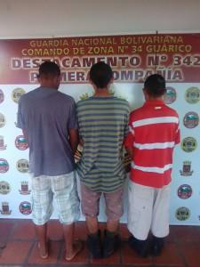 Miembros de banda dedicada al robo y hurto de ganado