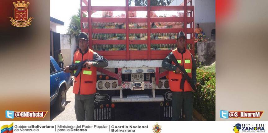 Un detenido y 10 toneladas de maíz fue incautado por la GNB en Cojedes