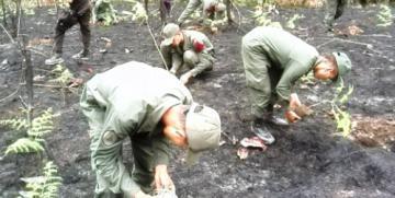 CEGA Miranda realiza jornada de reforestación en conmemoración al día del Árbol