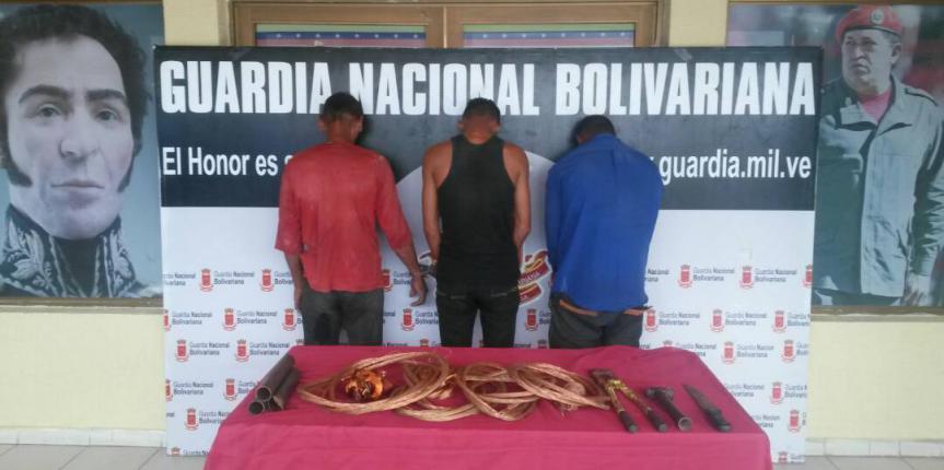 """GNB Falcón desmanteló banda """"El Uver"""" dedicada al hurto de material estratégico en Punto Fijo"""