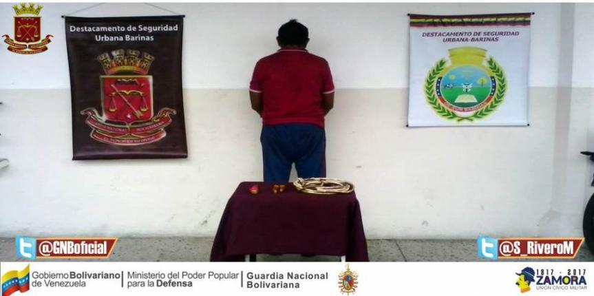 Aprehendido ciudadano cuando desmantelaba tendido eléctrico en Barinas
