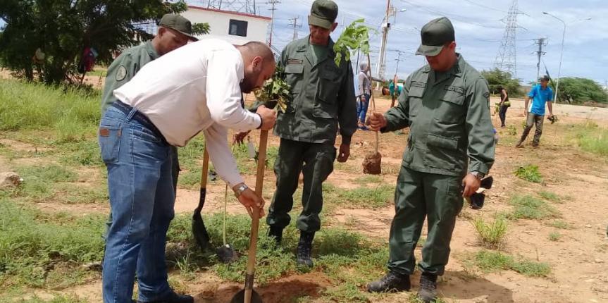 GNB Zulia sembró más de 500 plantas en la Jornada de siembra de Arboles