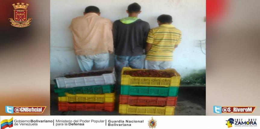 GNB Anzoátegui detuvo tres ciudadanos por intento de saqueo a camión volcado en troncal 9