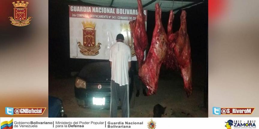 Aprehendido intentando pasar contrabando de carne en Tucupido