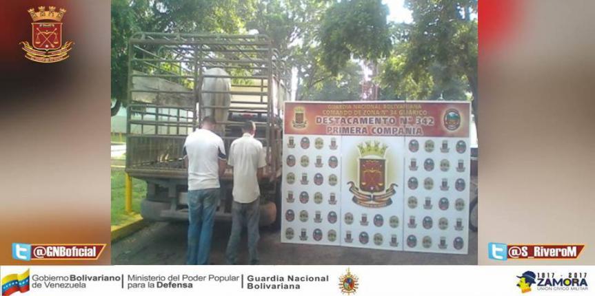 GNB Guárico los arrestó por robo en finca