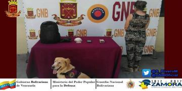 GNB Mérida capturó a mujer con panela de cocaína