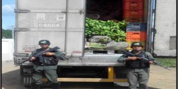 GNB confisca 17 toneladas de hortalizas en el estado Guárico