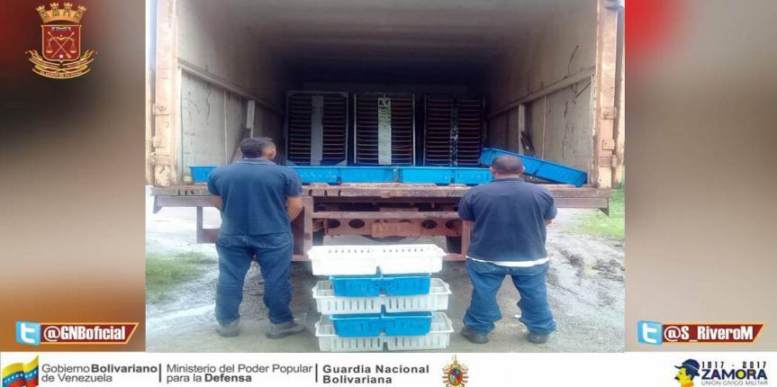 GNB Guárico aprehendió a dos ciudadanos por el delito de hurto