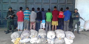 GNB arrestó a 9 ciudadanos por hurto de más de 140 kilos de maíz en el estado Monagas
