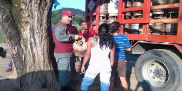 Guardia del Pueblo realizó jornada de venta de gas Comunal en el estado Portuguesa