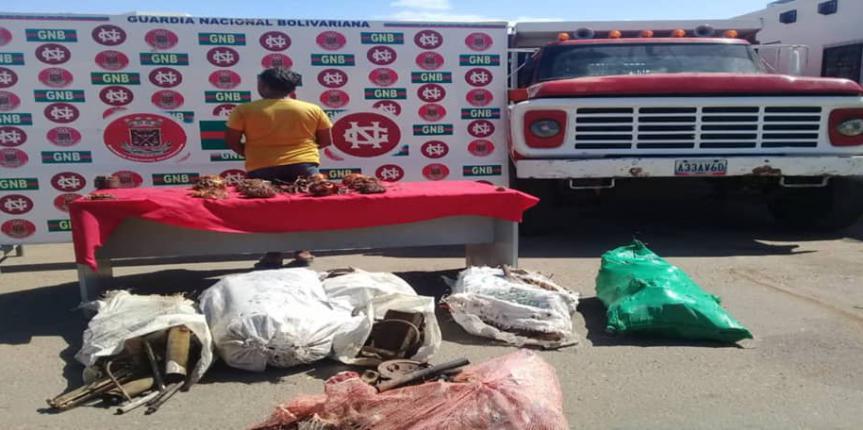 Microtráfico, material estratégico y retención de combustible lo más resaltante de la GNB Zulia en las últimas 24 horas