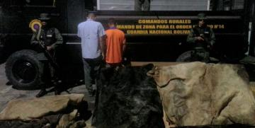 GNB Yaracuy arrestó a tres ciudadanos por robo de ganado