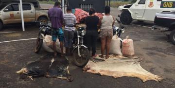 Capturados tres ciudadanos robando carne de res y caballos en Guárico