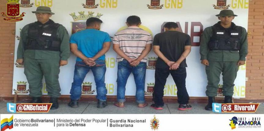 """Desmantelada  banda roba ganado conocida como """"Los Chipiros"""" en Barinas"""