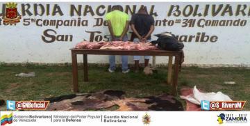 Capturados dos azotes de ganaderos en Guárico